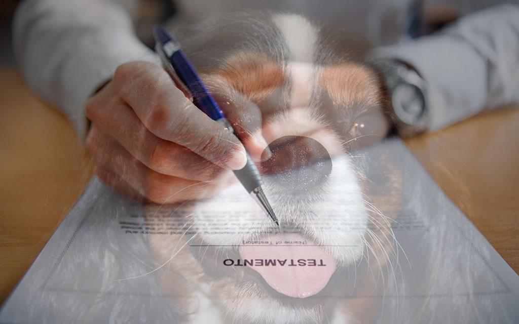 eredità animali