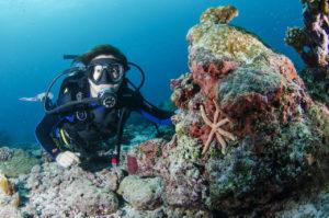 responsabilità legali nella subacquea